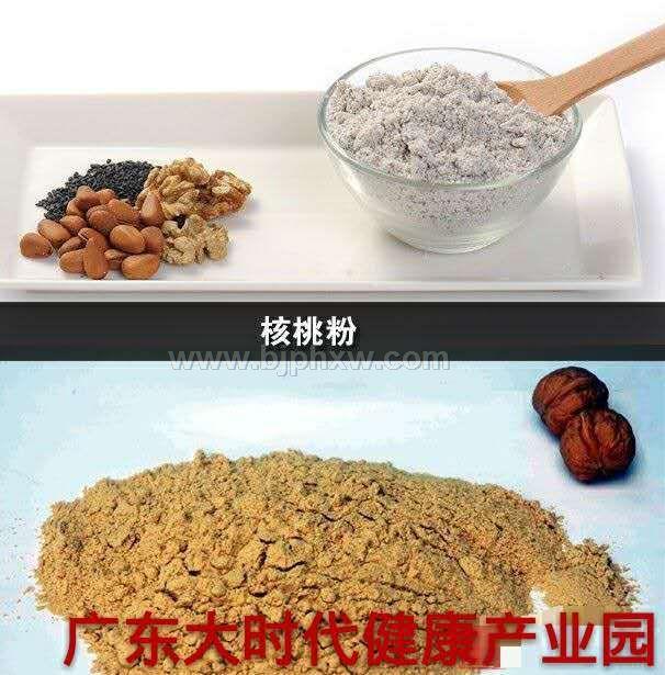 核桃蛋白质粉